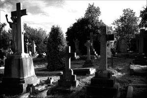 К чему снится кладбище мужчинам
