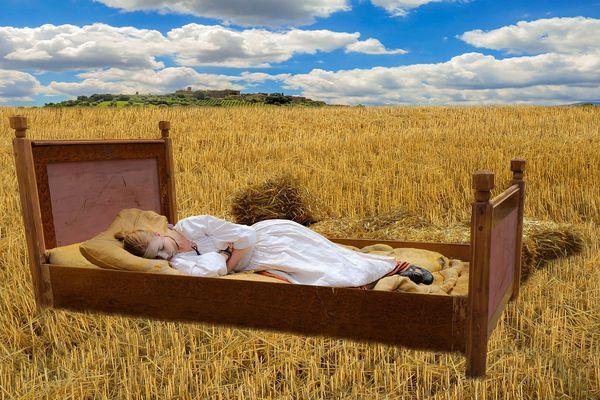 К чему снится поле