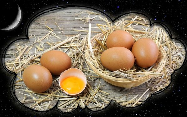 Куриные яйца во сне