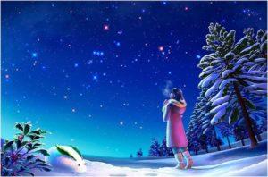 На ночное небо