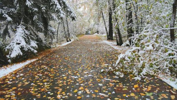 Приметы на Покров по погоде