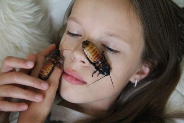 Тараканы на человеке