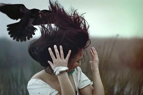 Ворон нападает на человека