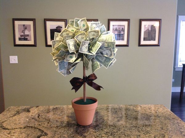 денежное дерево подарок