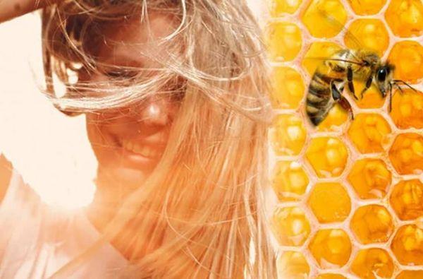 к чему снится пчела