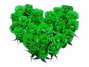 к чему снятся Зеленые цветы