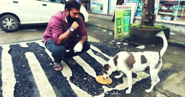 кормит пса