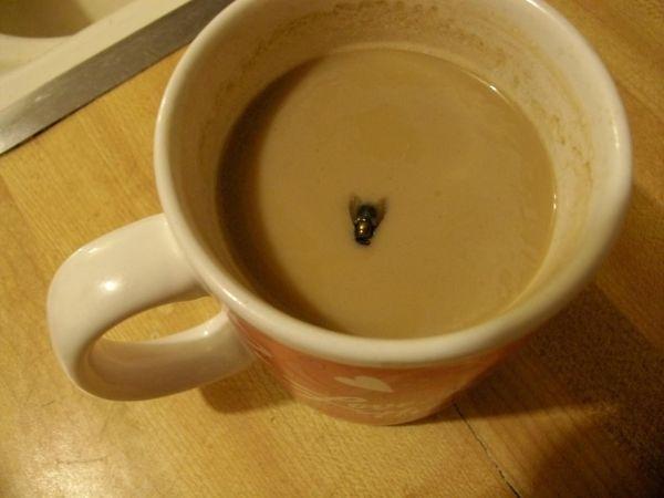 муха в кофе