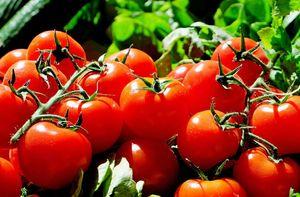 помидоры во сне