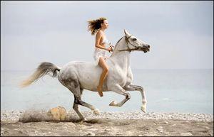 скакать на белом коне во сне