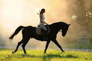 скакать на черном коне во сне