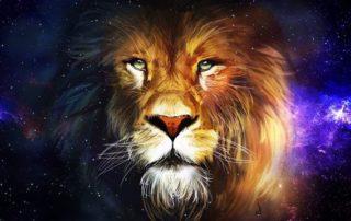 снится лев