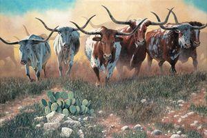 стадо коровье