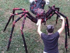 убить большого паука сон
