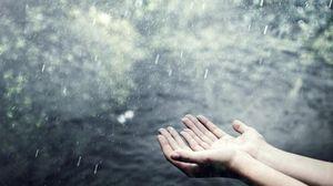 во сне видеть дождь
